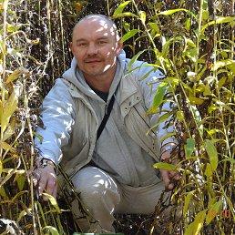 Юра, 44 года, Домодедово