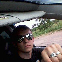 Александр, 29 лет, Ростов