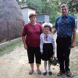 Василь, 62 года, Иршава
