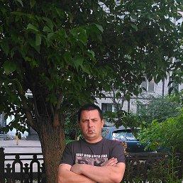 Артем, 36 лет, Жарковский
