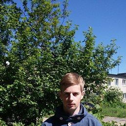 Дмитрий, 29 лет, Сосновый Бор