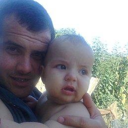 Анатолий, 32 года, Вилково