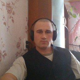 антон, 37 лет, Омский