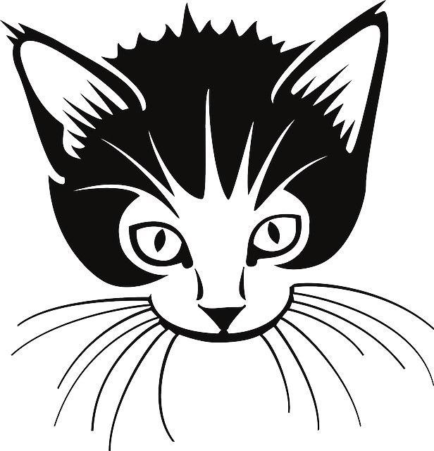 самый картинка кота мордочка рисунок сестра, бабушка левы