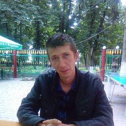Алексей, 41 год, Староконстантинов
