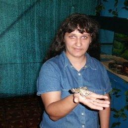 Галина, 36 лет, Ровеньки
