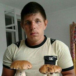 Иван, 29 лет, Павлоград