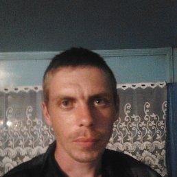Тимахов, 30 лет, Алейский