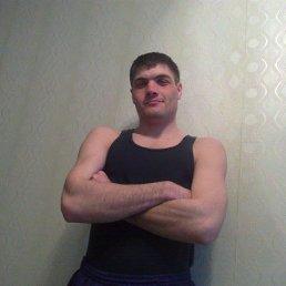 Николай, 31 год, Прогресс