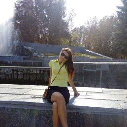 Фото Солнышко, Павлоград - добавлено 25 августа 2016