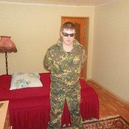 Алексей, 30 лет, Торбеево