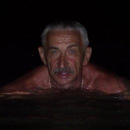 Фото Виктор, Брянск, 62 года - добавлено 1 сентября 2016