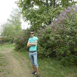 Андрей, 31 год, Будогощь