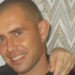 коля, 36 лет, Новоузенск