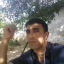 Akmal, 34 года, Москва