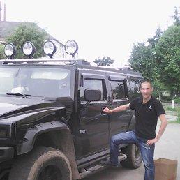 Вадим, 38 лет, Волхов