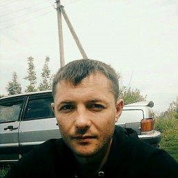 Александр, 30 лет, Одоев