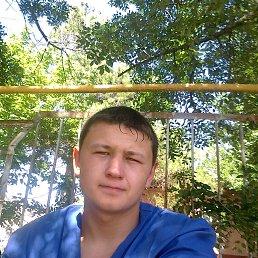 Александр, 26 лет, Каневская