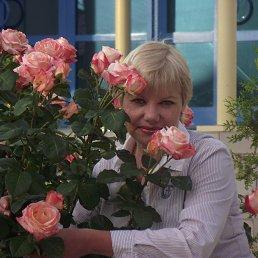 Антонина, 62 года, Балашов