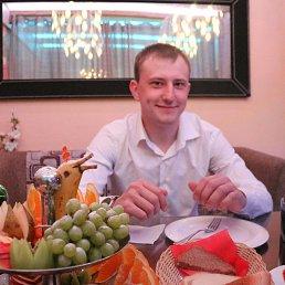 Николай, 29 лет, Кашира