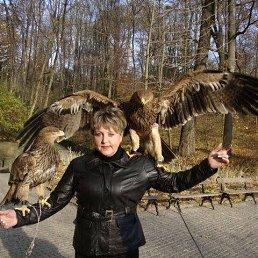 Светлана, 42 года, Монастырище