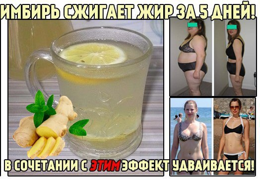 На Сколько Можно Похудеть Имбирем. Имбирь для похудения: проверенные рецепты