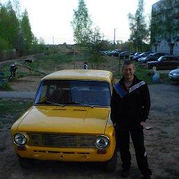Роман Пироговский, 43 года, Сольцы
