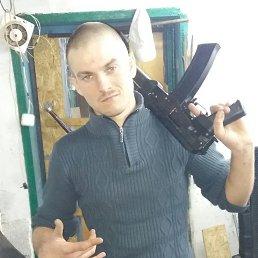 Дмитрий, 28 лет, Батайск