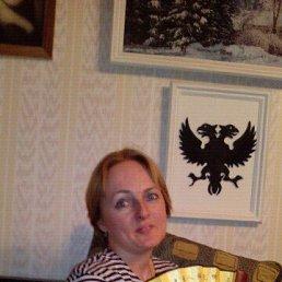 Дарья, 44 года, Климовск