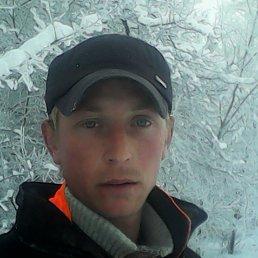 алекс, 29 лет, Новомичуринск