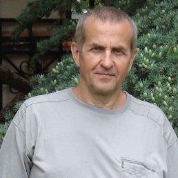 Валерий, 66 лет, Шепетовка