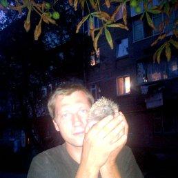 Данил, 29 лет, Конотоп
