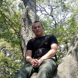 Евгений, 29 лет, Кимовск