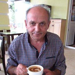 Юрий Росанов, 64 года, Гуково