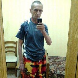 Алексей, 42 года, Шентала
