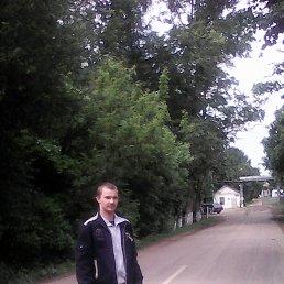 Алексей, 28 лет, Приазовское