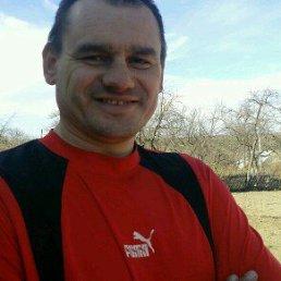 Николай, 47 лет, Сквира