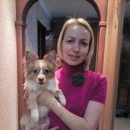 Ольга, 46 лет, Новокузнецк