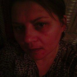 татьяна, 43 года, Славгород