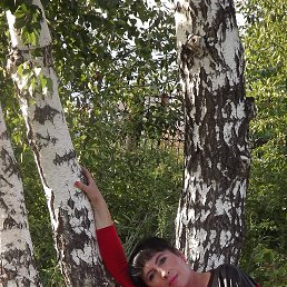 irina, 53 года, Зеленогорск
