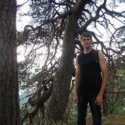 Сергей, 29 лет, Светлоград