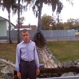 Анатолий, 34 года, Краснощеково