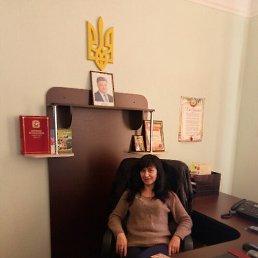 Наталья, 43 года, Сахновщина