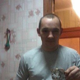 дмитрий, 30 лет, Таловая