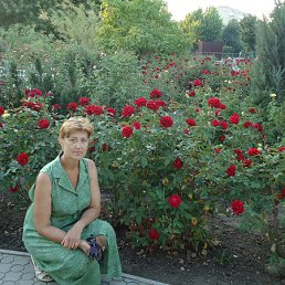 Елена, 64 года, Светловодск
