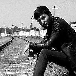 Анушер, 25 лет, Советский