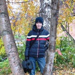 Максим, 27 лет, Каменск-Уральский