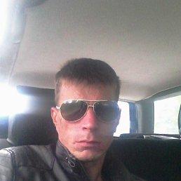 Василий, 29 лет, Приморск