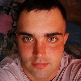 дмитрий, 28 лет, Андреаполь