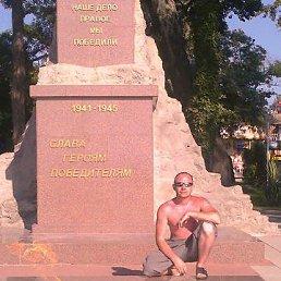 владимир, 40 лет, Мирный